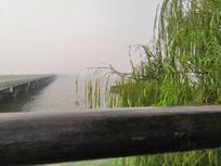 凭栏远眺湖景图片