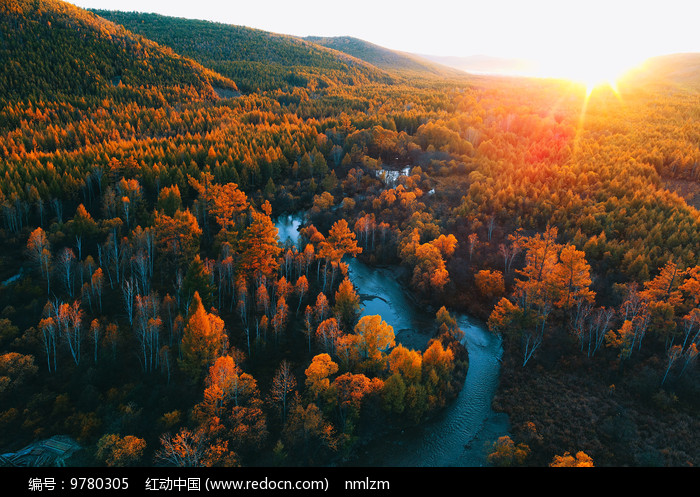 航拍树林小溪秋色夕阳图片