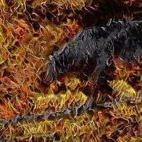 抽象动物火焰油画海报