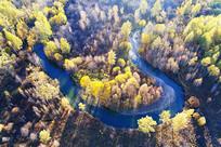 灿烂的河湾彩林