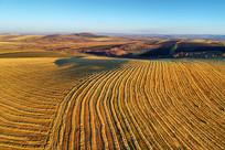 航拍秋季鎏金的田园风光