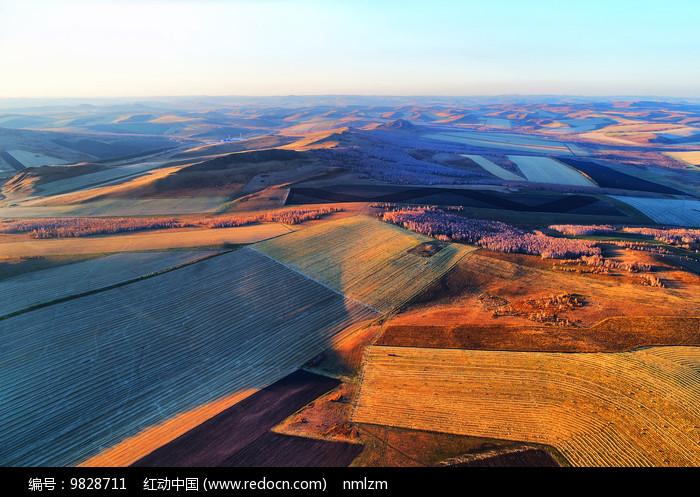 航拍秋天金色的田野图片