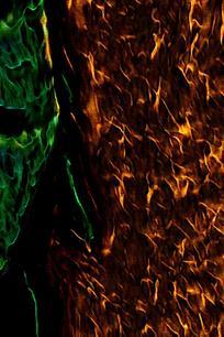 酷炫金属火焰底纹背景