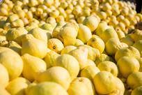 思州柚丰收