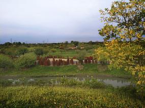 秋景公园景观