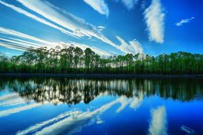 森林湖蓝天白云风景