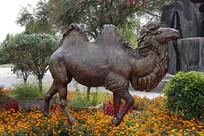 内蒙古博物院外的骆驼雕塑