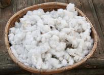 簸箕里的棉花