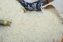 大米常香米粮食