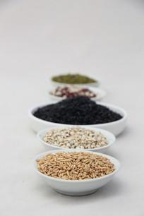 薏米杂粮透视