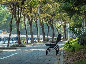 绿城南宁景观椅