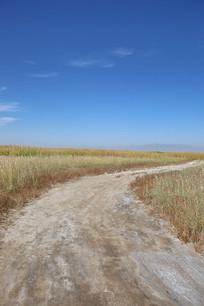 通向远方的乡间土路