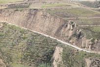 黄土高原地表植被