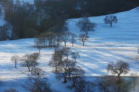 雪地中的落日余晖