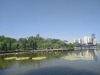 雁滩公园湖水摄影