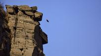 石头山峰和飞鸟