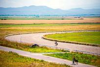新疆大草原