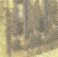 大气金色质感皮纹