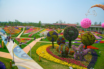 斑斓色彩的花圃
