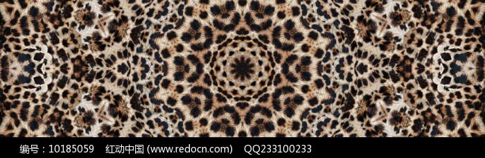 豹纹花型图片