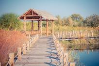 湿地公园木栈道和凉亭