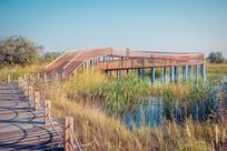 湿地与木栈道