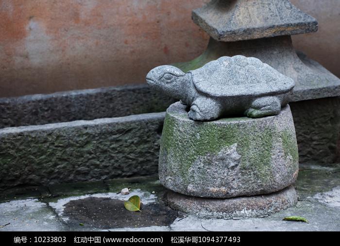 青石乌龟图片