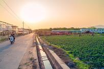黄昏下的农田小路