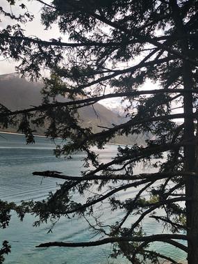 错高湖水和树木交映