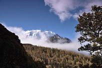 云雾缭绕的雅拉雪山