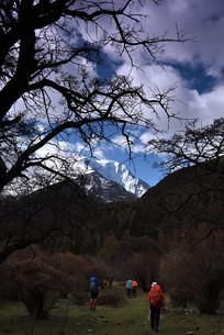 雅拉雪山之穿越原始森林
