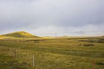 草地掠过阳光