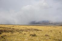 大雾席卷草原
