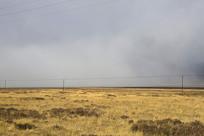 高原草地云雾弥漫