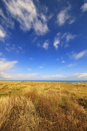 青海湖边草场