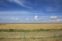 青海湖牧民草场