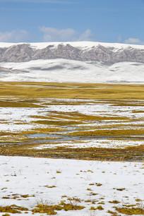 祁连山爬雪山过草地