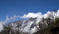 云雾缭绕的狮子王峰