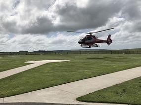 直升机场草坪