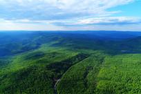 大兴安岭原始森林公路景观