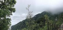 云雾缭绕的庐山