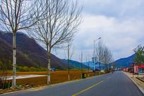 丹东宽甸青山沟公路树木与山峰