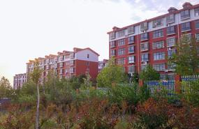 新农村楼房建筑