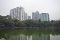 流花湖公园湖泊