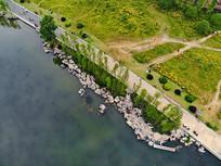航拍湖边绿植