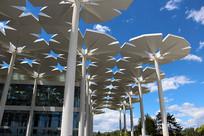 北京世园会国际馆花伞造型