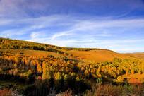 层林尽染秋天山