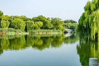 大明湖湖泊风光