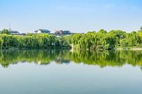 大明湖湖水倒映