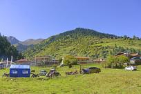 阿坝黑水三达古村之中达古藏寨